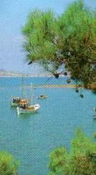 Курортная зона г.Аувалык. Турция окружена четырьмя тёплыми морями и как курорт может удовлетворить любого туриста (все виды водного, парашутного, горного, авто и вело спорта)