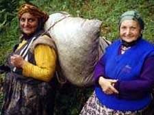 Турчанки-крестьянки. Пожилые турчанки.