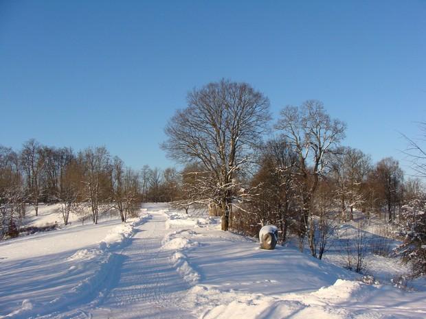 Картинки россия зимняя природа