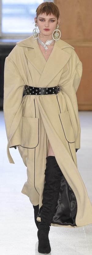 Модное женское пальто Осень-Зима 2017/2018 - фото
