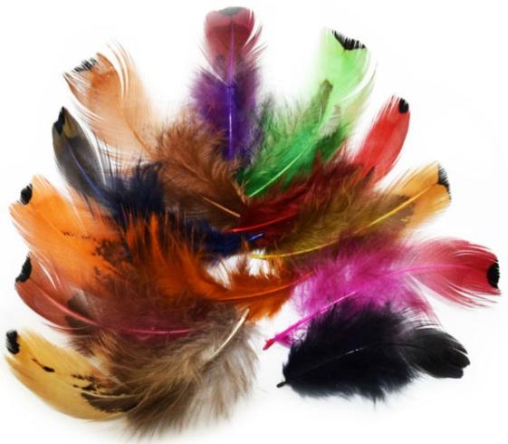 Цветные перья для новогоднего декора в год Петуха