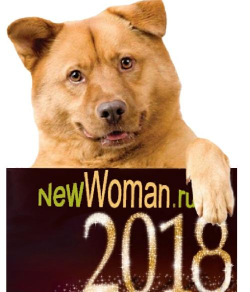 2018 год по восточному календарю как встречать и в чем