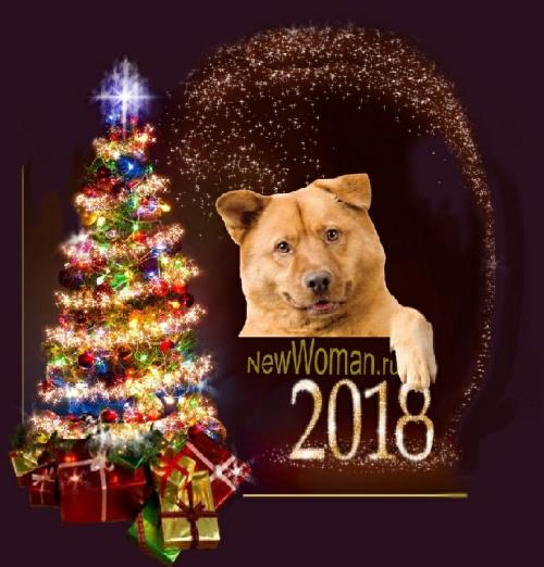 идеи новогодних подарков на 2018 год