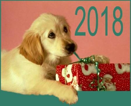 что подарить на новый год Желтой Собаки